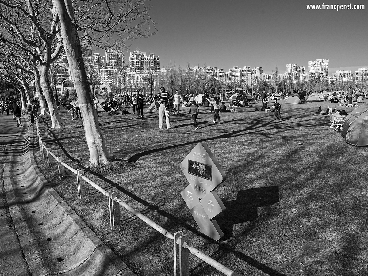 Playground on grass. Black and White composition needs details with loads of things in focus which imply a rigorous placement  of every element in the frame.