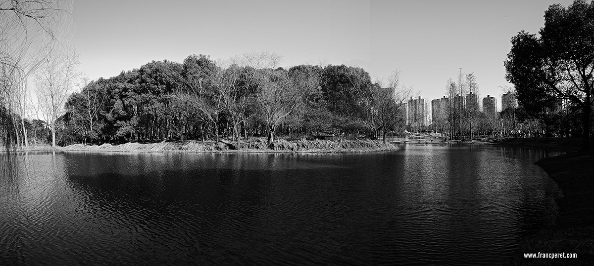 Shanghai Century Park. Winter landscape are among the best topic for Black and white photography.
